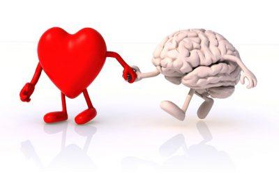 Terapia Focalizada en las Emociones
